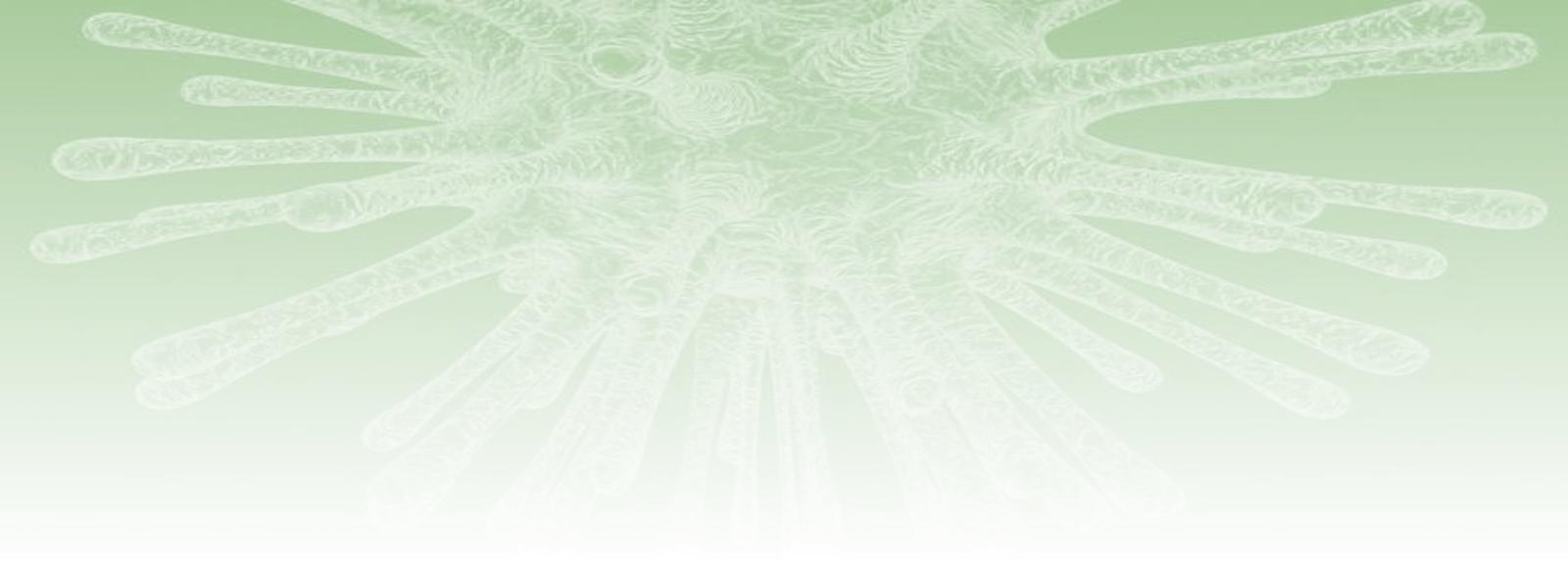 Virus vert dégradé